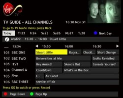 TellyGuides: On-Screen EPG Channel Lists