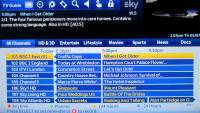Sky's Programme Guide